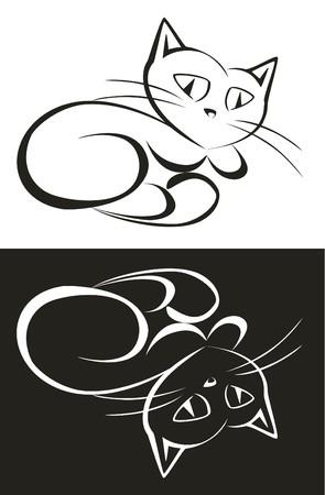 Cat 02 photo