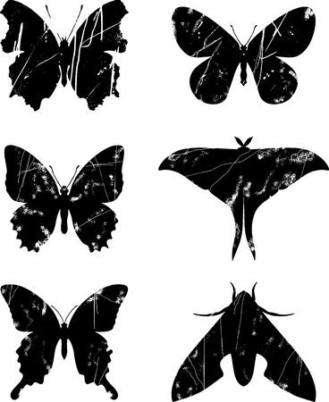 siluetas: Butterfly grunge set