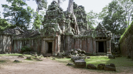 Giant tree roots covering Ta Prom temple, Siem Reap, Cambodia, landmark in Siem Reap, Cambodia. 版權商用圖片