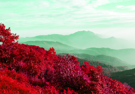 Doi Inthanon, Chom Thong, Chiang Mai Province, Thailand This mountain is an ultra prominent peak and the highest. Naphamethinidon and Naphaphonphumisiri, two chedis near the summit. Purple toning