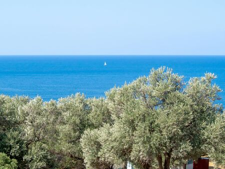 The beach of Aphrodite is the famous tourist destination, Cyprus. Amazing Seascape with blue sea, cliffs and trees Stockfoto