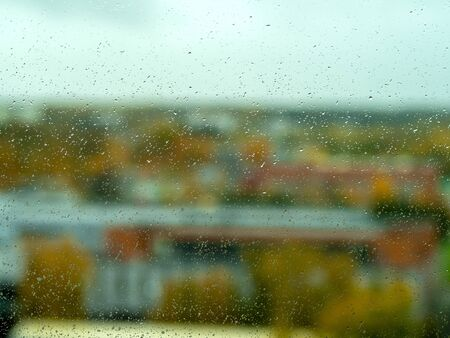Rain drops on window with green forest in background. Wet window glass. Raindrops close up.