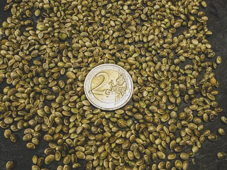 Two euro coin and Cannabis, marijuana, light drugs prescribe, alternative remedy. Hemp seeds. view For desktop, wallpapers, banner. Copy space, text box. Pattern Background. Cannabis Growing Concept
