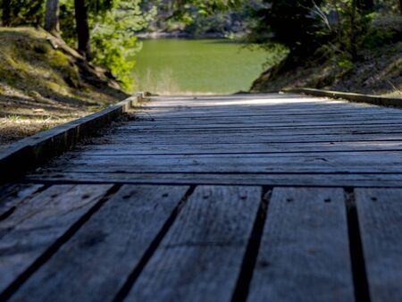 selective focus. wooden boardwalk near the lake surrounded by trees. Summer vacation background. Empty wooden pier with green lake in the background