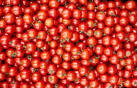 Ripe red tomatoes close up. Fresh vegetables.