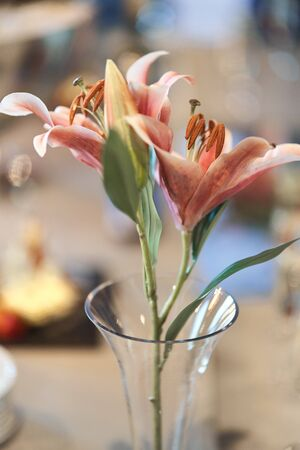 Beautiful pink lily flower in a vase.