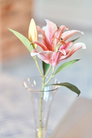 Beautiful pink lily flower in a vase
