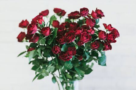 Bouquet of large red roses close up.