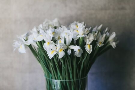 A bouquet of large white irises close up.