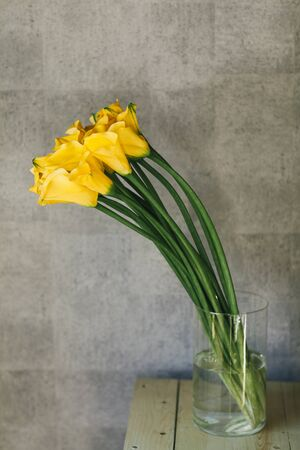 A bouquet of yellow callas close up. Imagens