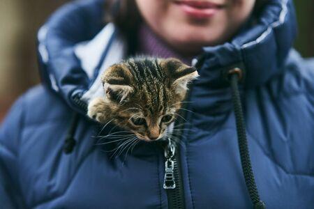 little cute kitten basking in his bosom in a jacket.