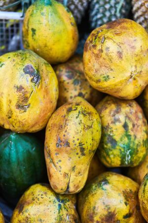 Fresh papaya on a shelf in a supermarket. 스톡 콘텐츠