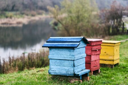Multi-colored beehives on the river bank. Bee houses