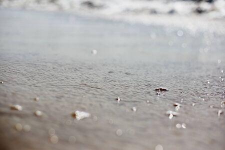 Foam on seawater. Indian ocean. Water close-up. Imagens