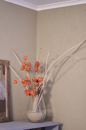 Vase with Physalis in the interior of the apartment.
