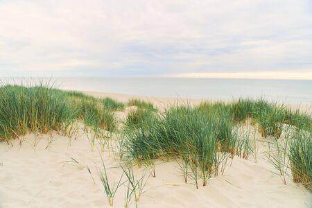 Baltic Sea. Beach in the village of Amber. Beach in Russia with a blue flag. Archivio Fotografico
