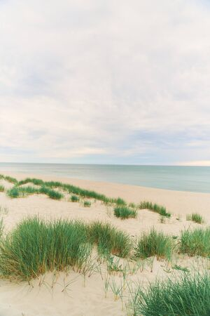 Baltic Sea. Beach in the village of Amber. Beach in Russia with a blue flag. Kaliningrad region. Archivio Fotografico