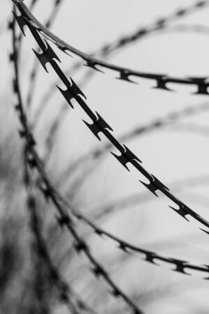 Monochrome photo of detail of barbed wire. Steel border. Prison, military or quarantine concept