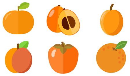 orange fruit icons Illustration
