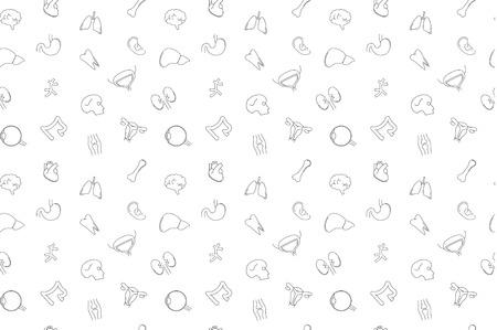 Vector anatomy pattern. Anatomy seamless background. Illustration