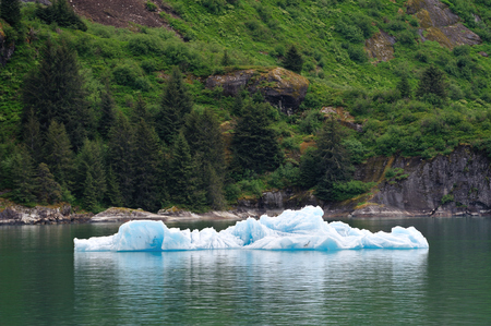 Long Iceberg