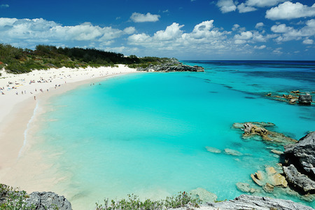 People on vacation in Pink Sand beach Bermuda Standard-Bild