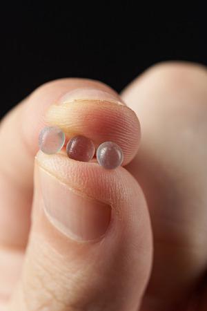granules: macro of silica gel granules in hand on black Stock Photo