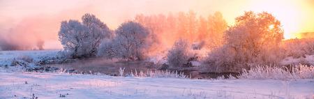 sun shines on frosty winter trees panorama Standard-Bild