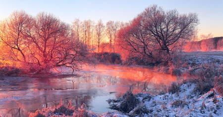 riverside trees: Frosty trees on the frozen riverside with fire red colours Stock Photo