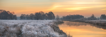foggy winter sunrise with frozen grass and trees