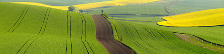 italian landscape: Italian summer landscape with track of machines Stock Photo