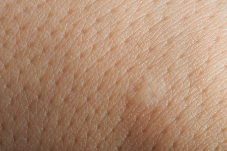 macro de poros en la piel mano humana