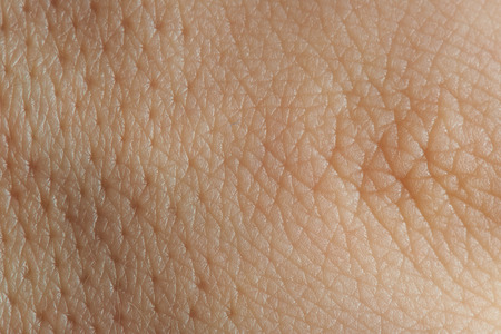epidermis: close up texture of human skin with pores