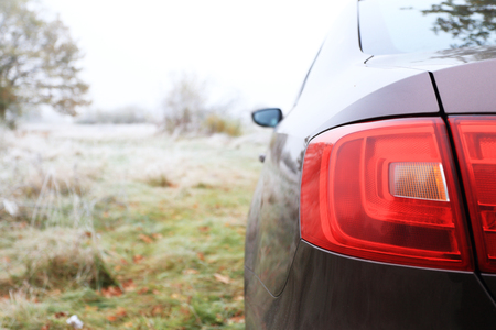 taillight: red taillight of brown sedan on natural background