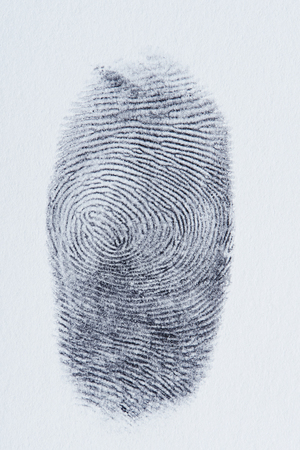 Macro of black fingerprint on white paper close up