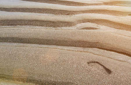 foot step: Human foot step on sand of sea beach in sun light
