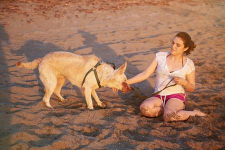 persona saltando: labrador mojado que sacude en la playa con su amigo de la mujer joven Foto de archivo