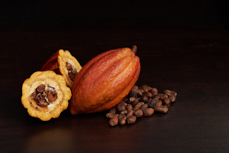 Cacao farmer  harvest fruits background. Natural cocoa fruit