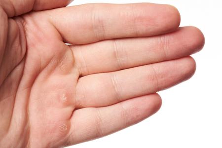 Handpalm met blaar dichte omhooggaand geïsoleerd op witte achtergrond