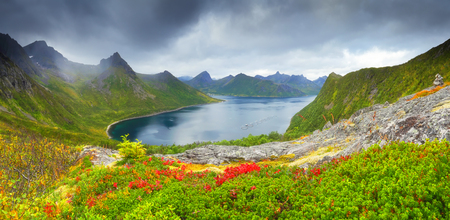 Autumn norvegian scene. Autumn day on norway fjord. Panoramic view at blue fjord on cloudy day.