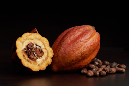 Macro of open cocoa pod on dark brown surface