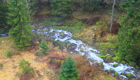 River in forest aerial view. Aerial view at mountain river in green forest. Banque d'images