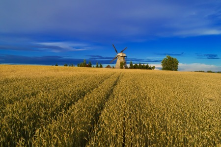 Harvesting background. Old windmill in wheat field. Rural scene. Stock Photo