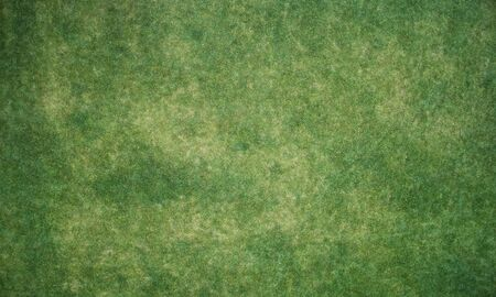 Green grass meadow texture above top view with different color spots Reklamní fotografie - 133100564