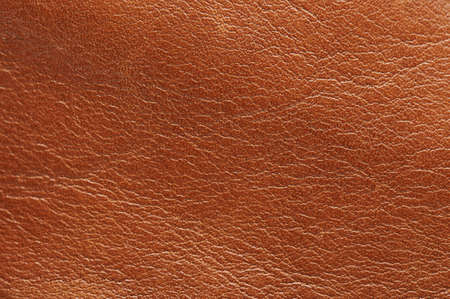 Brown cow skin background macro close up view