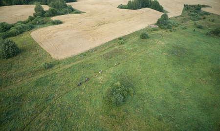 Horse ride in wild landscape aerial above view Standard-Bild