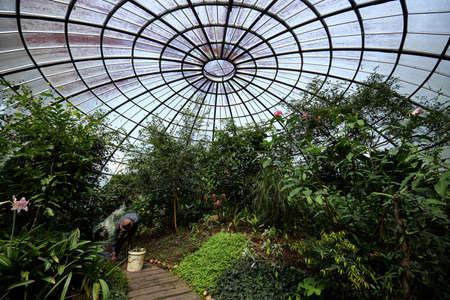 Peradeniya Royal Botanical Gardens in Sri Lanka, Kandy Stock Photo