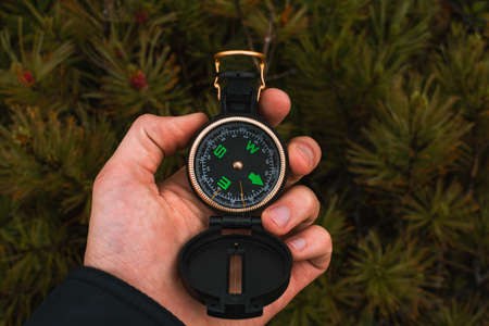 Travel, camping, orienteering and navigation concept - black magnetic compass close-up in a man s hand, pine branches background