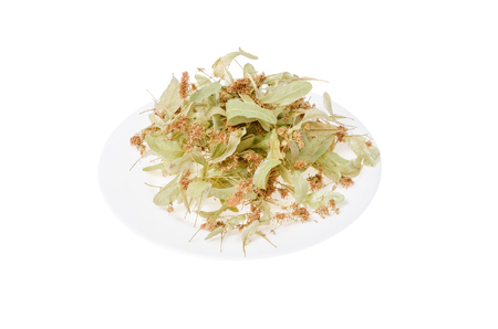 tilo: linden flowers on a white plate