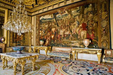 castle interior: The picture is interior in the castle Fontainebleau